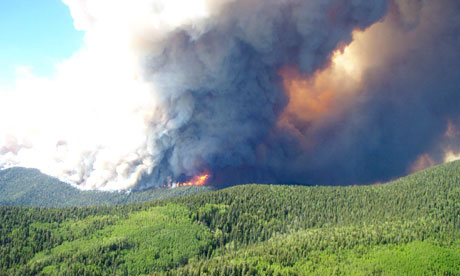 US wildfires: New Mexico firefighters struggle to contain Gila ...