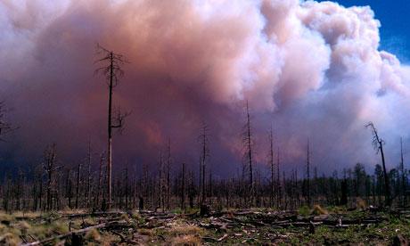 New Mexico wildfire fi