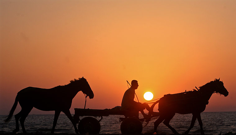 From the Guardian -  man in cart drawn by donkey on Gaza's beachfront - photo by Rex Features