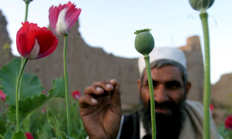 Afghanistan produces around 90% of the world's opiates