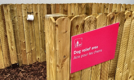 The Olympic dog relief