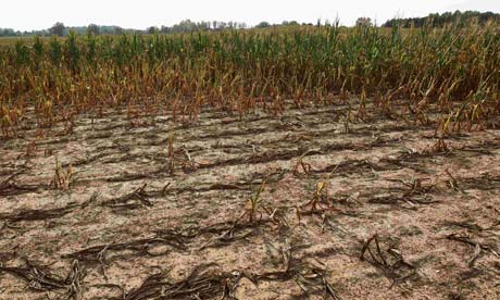 US drought to worsen