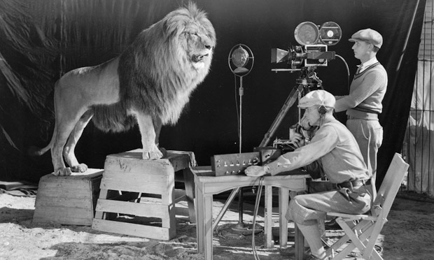 Lion: MGM Icon