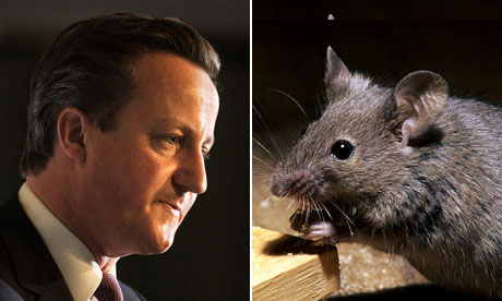 David Cameron and a mouse