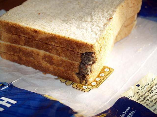 Foreign objects: A mouse in a loaf of Hovis