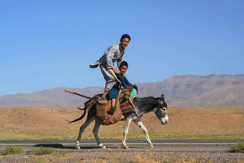 Afghan youths pose as they ride a donkey