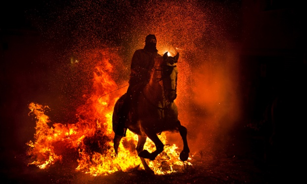 A man rides a horse through a bonfire in San Bartolome de Pinares, Spain, in honour of Saint Anthony, the patron saint of animals. On the eve of Saint Anthony's Day hundreds of people ride their horses through the narrow cobblestone streets of village during the Luminarias, a traditional festival meant to purify the animals with the smoke of the bonfires and protect them for the year to come