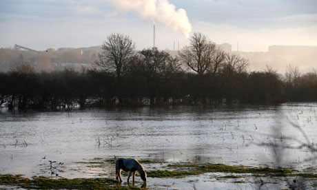 A horse grazes surrounded by floodwaters from the River Soar in Barrow Upon Soar