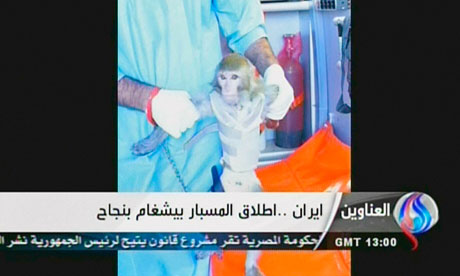 Iranian scientists hold a monkey which they sent up into space in a capsule