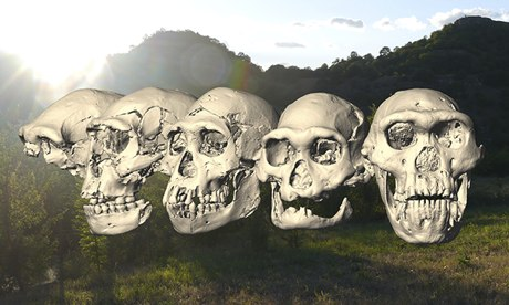 Five Homo erectus skulls found in Georgia