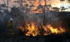 A NSW rural fire service volunteer puts out a fire in the town of Bell on Sunday.