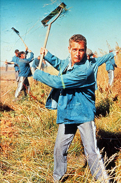 10 best: Cool Hand Luke