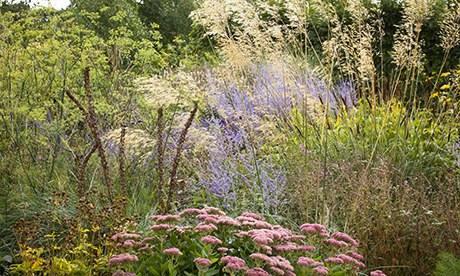 Gardens: prairie gardens