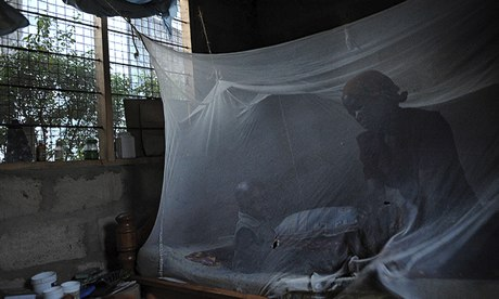 Hope of malaria vaccine by 2015 after successful trials