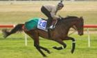 Jonathan Fleutot riding Verema