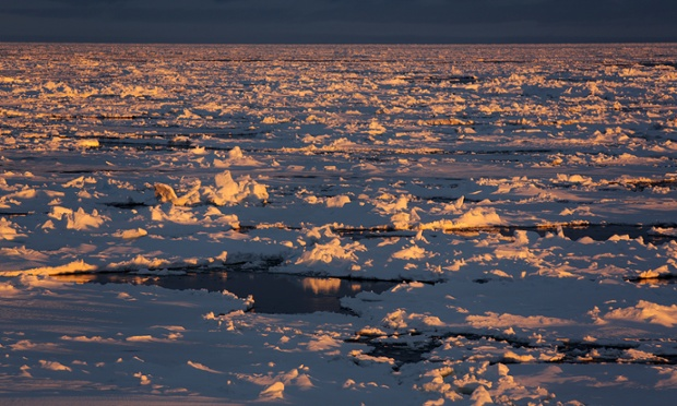 Antarctica Live: sunrise over ice floes
