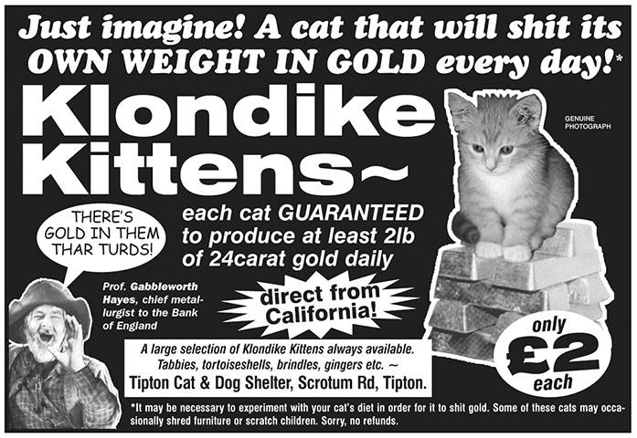 Cat Carrier (Tin Hat Time) Klondike-Kittens-006