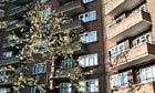 Southwark London sex attacks IPCCC report