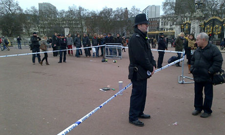 Taser incident outside Buckingham Palace