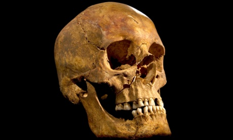 The skull  found in Leicester that is potentially that of Richard III.