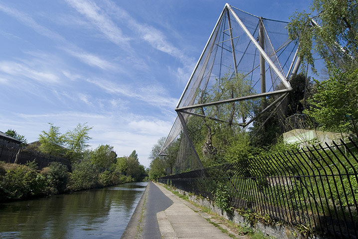 动物园的建筑往往充满神奇 - 安阳版 - 大河网眼遇-网