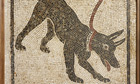 Mosaic of a Pompeii guard dog