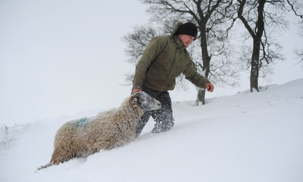 What's the weather like outside? No. 2. Kirkbymoorside, England min -2C before windchill. Stuart Buckle, tends to sheep on his farm in Kirkbymoorside during heavy snow in north Yorkshire. Photograph: Ian Forsyth/Getty Images