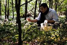 David Chang foraging in Denmark