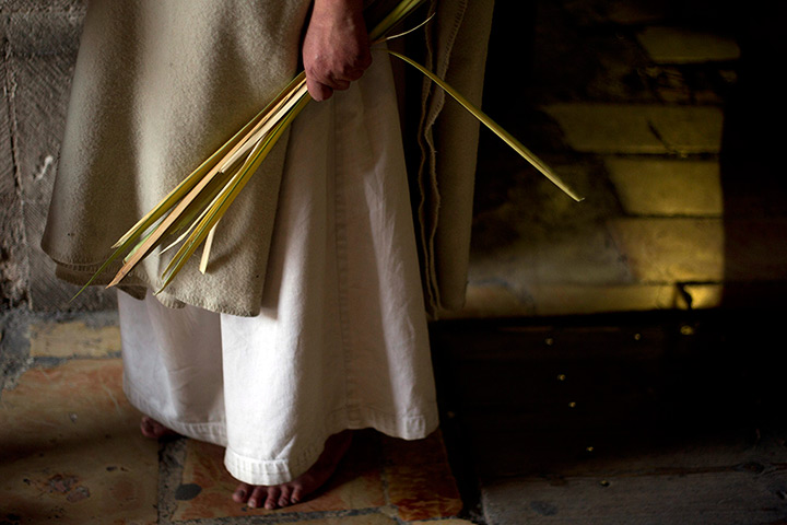 24 hours: Jerusalem: An Orthodox Christian worshipper holds a palm frond