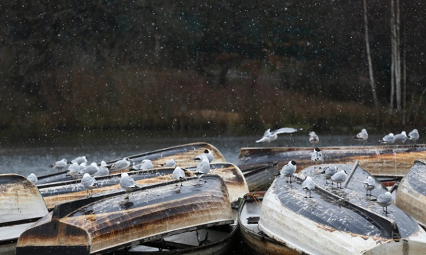 Back in chilly London: birds rest on upturned boats as light snow falls on a lake in Epping Forest, which is a shame for the kids on Easter holidays.