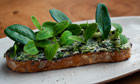 Potato and rye bread, seaweed butter, oyster and borage leaves