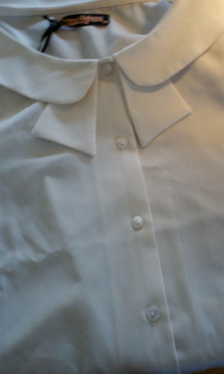 Close-up image of a button-down blouse