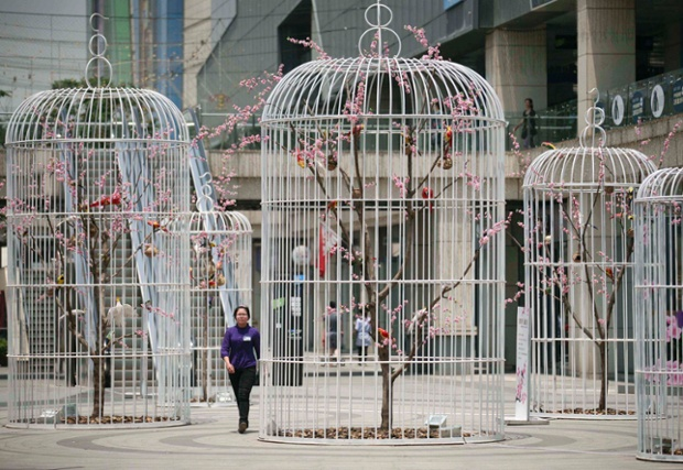 A woman walks past an installation of giant bird cages on a square in Nanjing, Jiangsu province, China. The cages containing artificial trees and birds were installed by the shopping mall which owns the square to promote environmentally friendly concepts to the public.