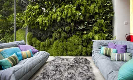 Easy Ways to Make Your Yard More Private by shadesailsydney.net.au