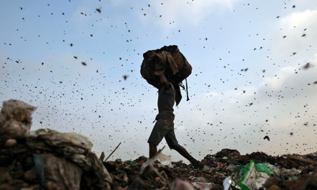 Insects and birds fly in a dump yard as a worker collects scraps in New Delhi.