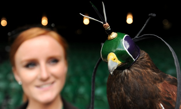 Hawkeye: Rufus the Hawk wears his new hood in Wimbledon colours while on patrol to deter pigeons on Centre Court with his handler Imogen Davies during day four of the Wimbledon Championships.