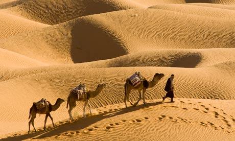 Camel caravan in north Africa