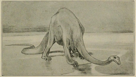 Sketch of Diplodocus from a 1905 edition of The Weekly Graphic