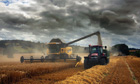 A combine harvester works its way through a field of barley