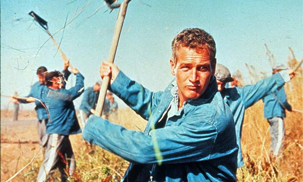 Paul Newman 30102016 Actor  DivX Clásico