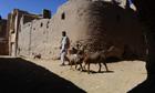 An Afghan shepherd
