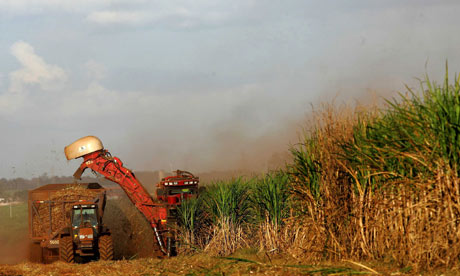 Biofuels made from sugar cane, Sao Paulo, Brazil