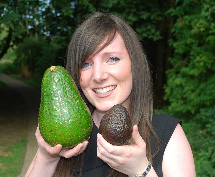 Avozilla: giant avocado