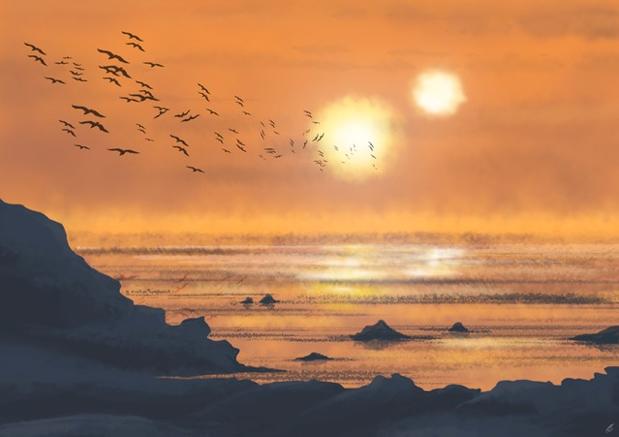 网上卫报读者灵感来自蔚蓝天空 - 苍穹为极限的艺术(图) - 月落台阁 - 月落台阁