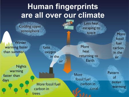 Summary of observational evidence that human carbon dioxide emissions are causing the climate to warm