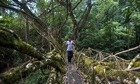A man crosses one of the living root bridges in Northeast India