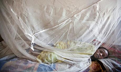 MDG : Malaria net