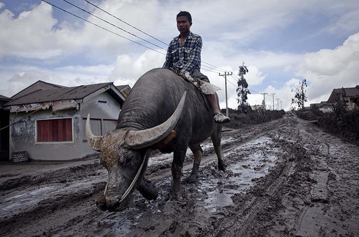 今日圖片泥濘滿歸途 - yutin08 - yutin08 雨天 的博客