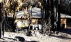 Bushfire damaged property in Stoneville western australia