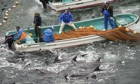 The annual dolphin hunt in Taiji, Japan